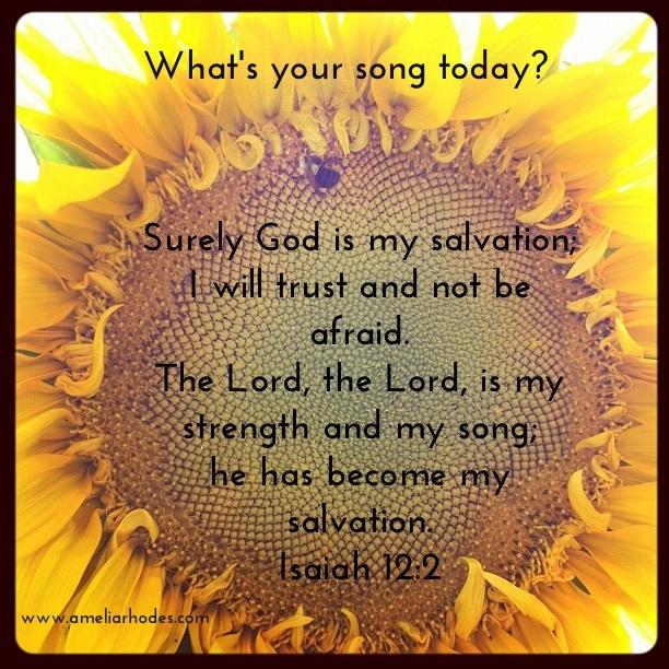 sunflower_song