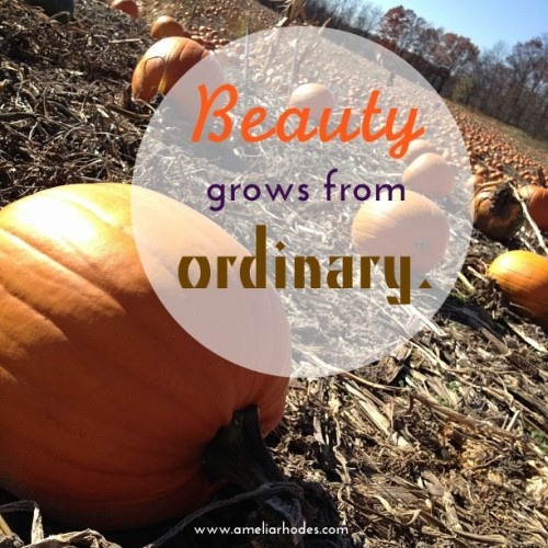 Beauty from Ordinary