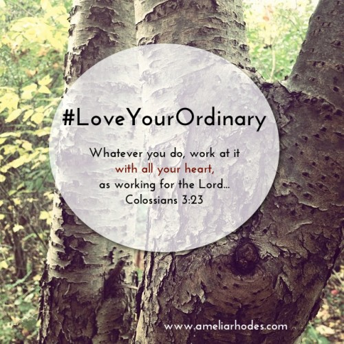 Love Your Ordinary
