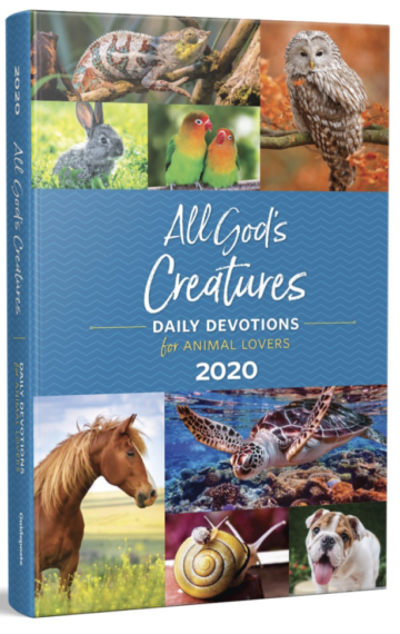 All God's Creatures 2020